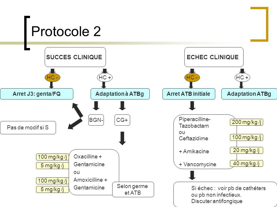 Protocole 2 SUCCES CLINIQUE ECHEC CLINIQUE HC - HC + HC - HC +