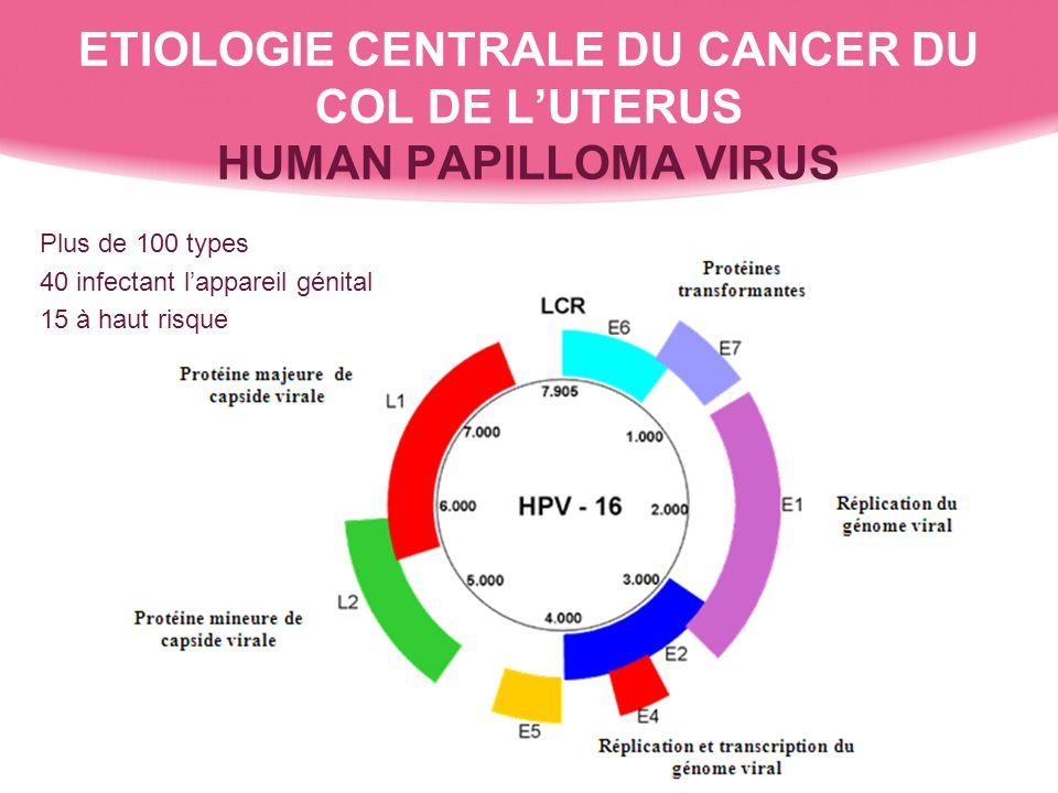 ETIOLOGIE CENTRALE DU CANCER DU COL DE L'UTERUS HUMAN PAPILLOMA VIRUS