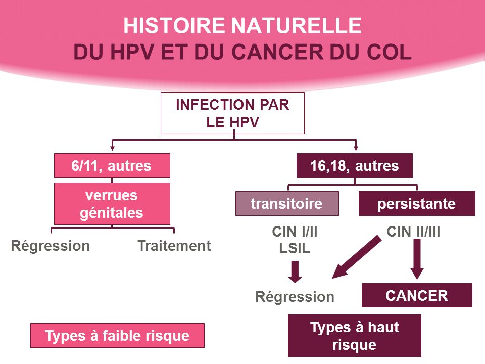 HISTOIRE NATURELLE DU HPV ET DU CANCER DU COL