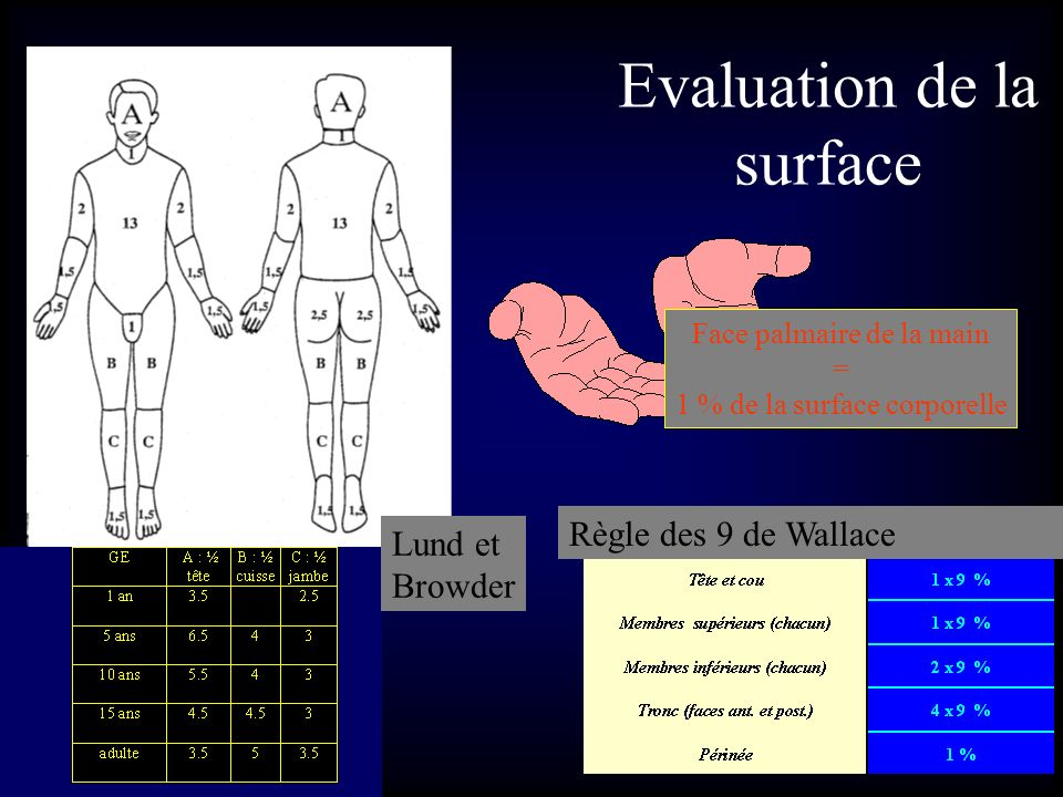 Evaluation de la surface