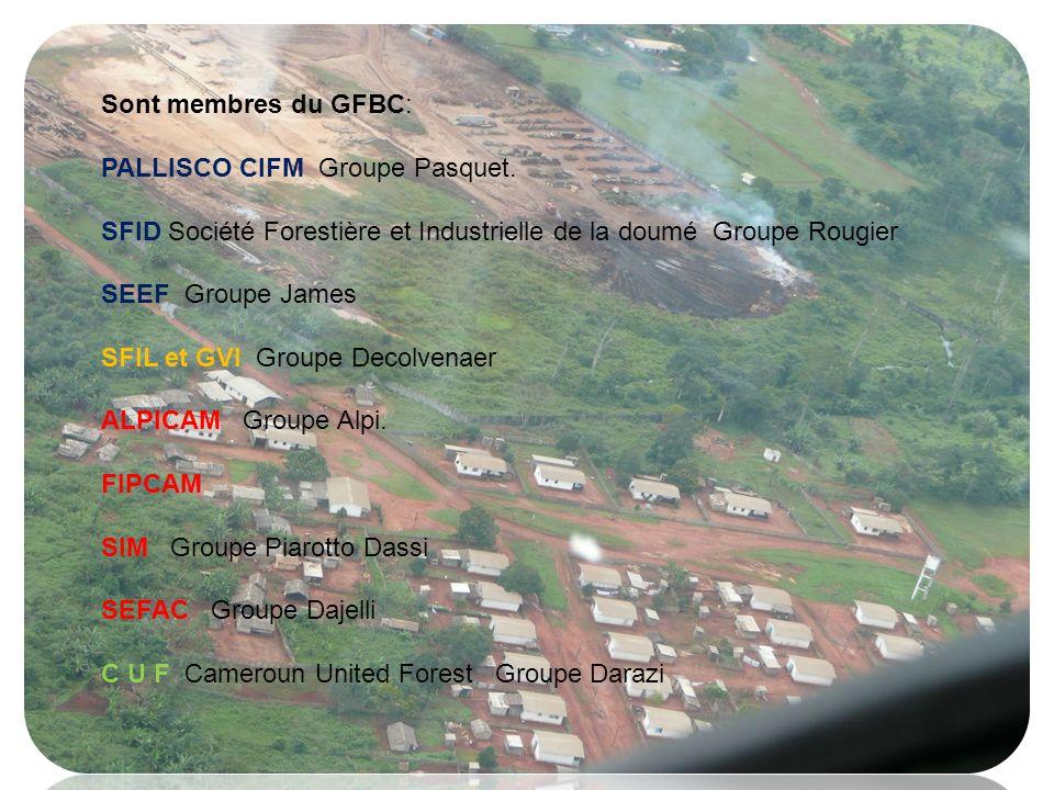 Sont membres du GFBC: PALLISCO CIFM Groupe Pasquet. SFID Société Forestière et Industrielle de la doumé Groupe Rougier.