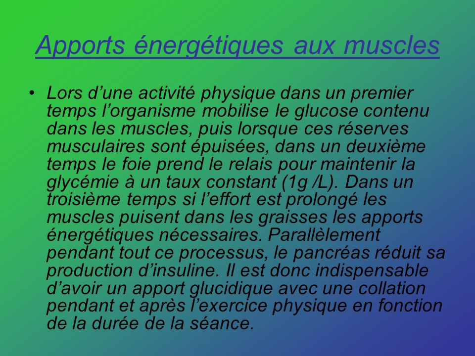 Apports énergétiques aux muscles