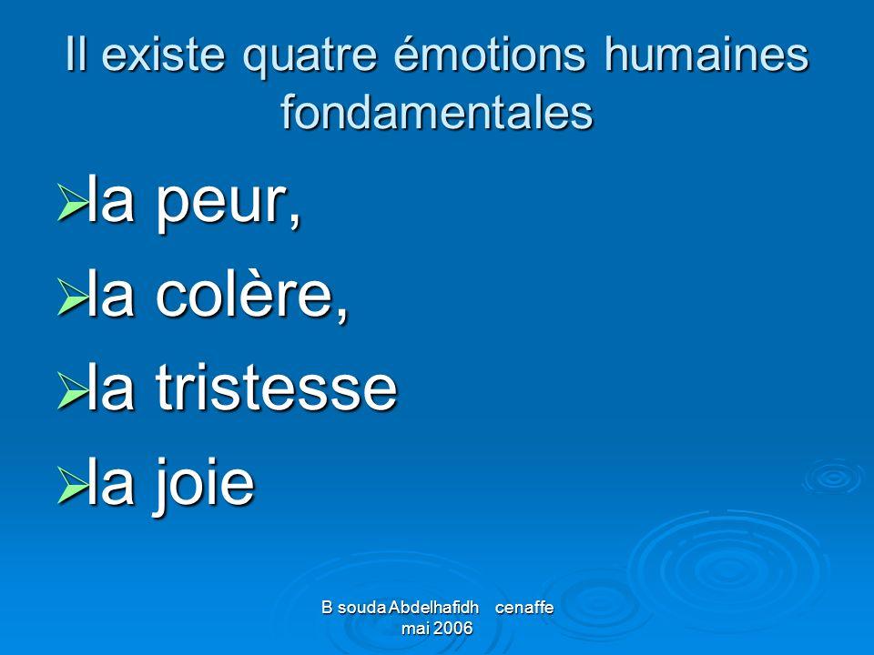 Il existe quatre émotions humaines fondamentales