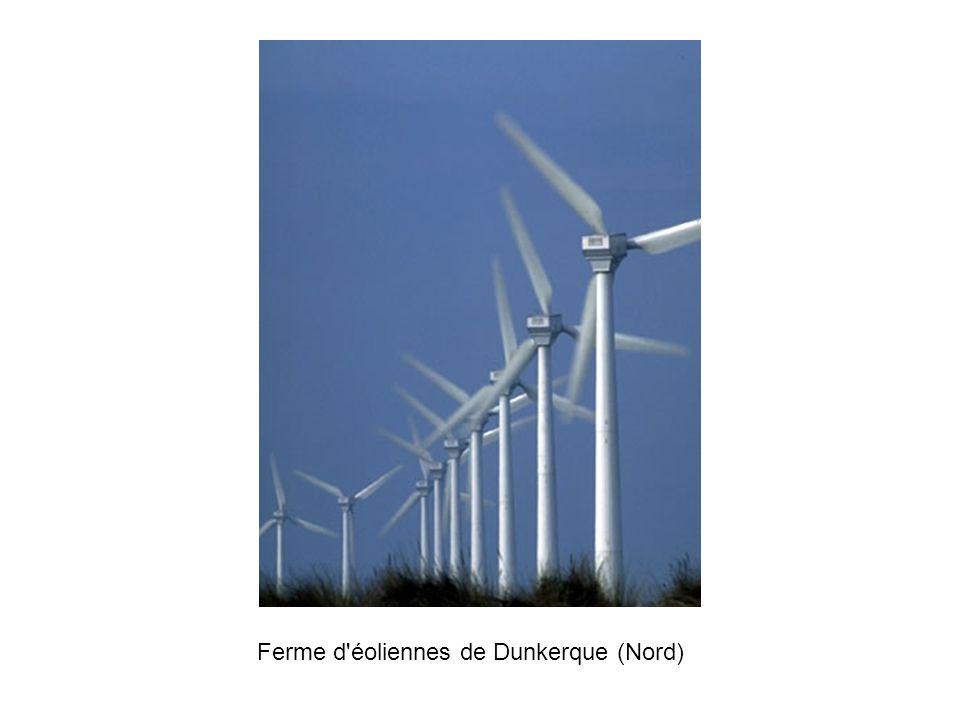 Ferme d éoliennes de Dunkerque (Nord)