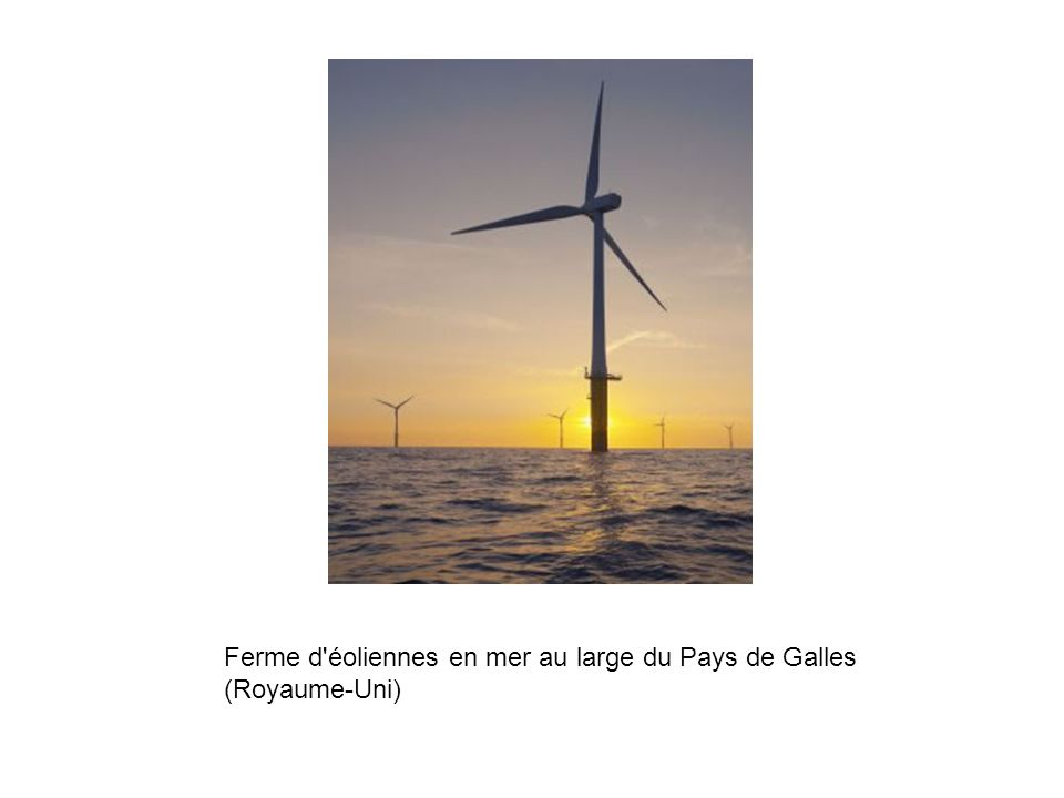 Ferme d éoliennes en mer au large du Pays de Galles (Royaume-Uni)
