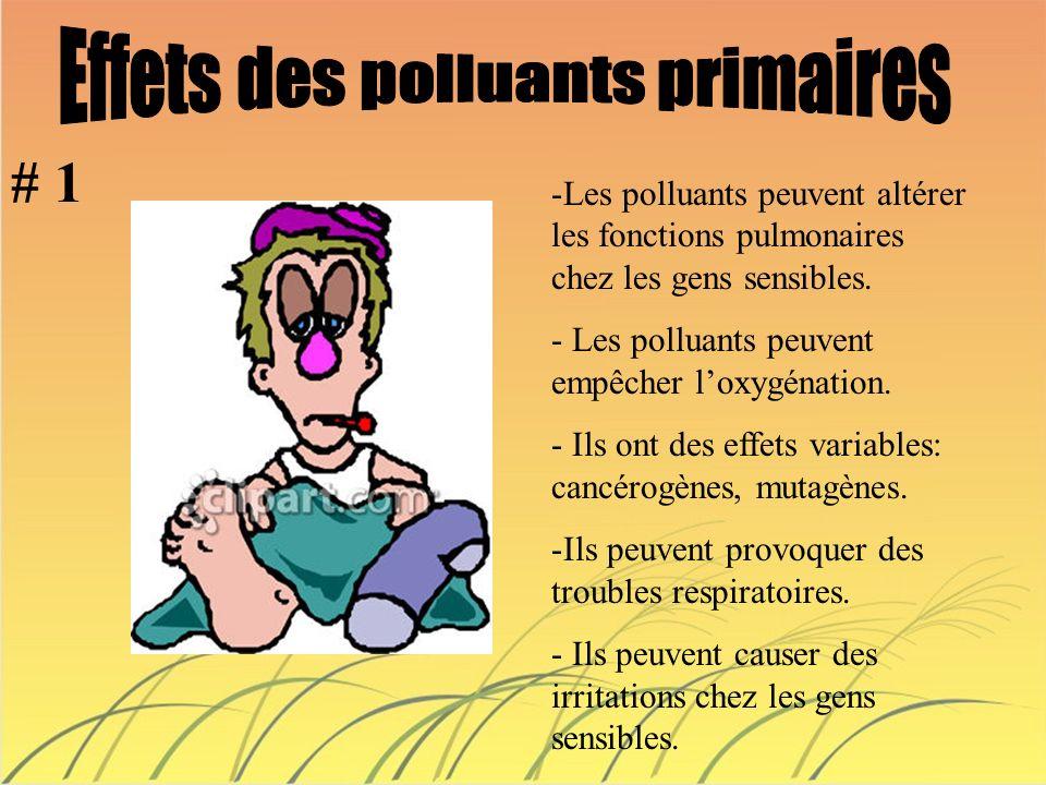 Effets des polluants primaires