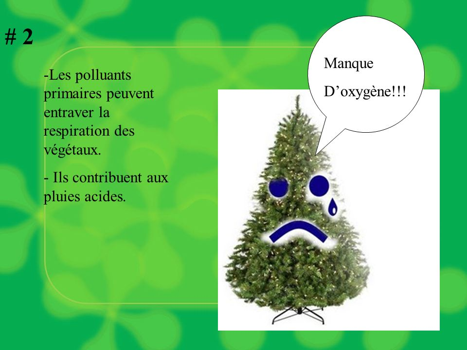 # 2 Manque. D'oxygène!!. Les polluants primaires peuvent entraver la respiration des végétaux.