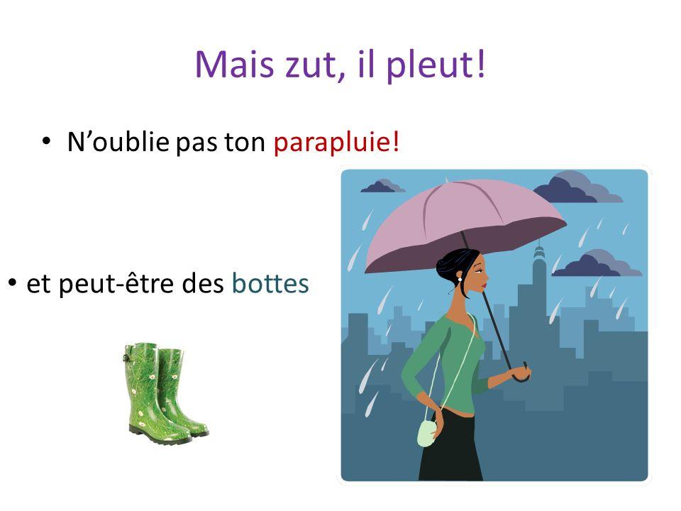 Mais zut, il pleut! N'oublie pas ton parapluie!