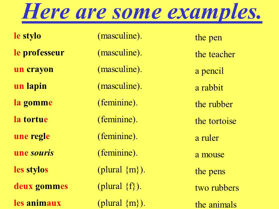 Here are some examples. le stylo (masculine). the pen