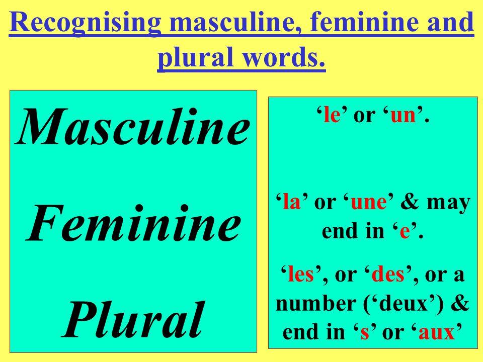 Masculine Feminine Plural