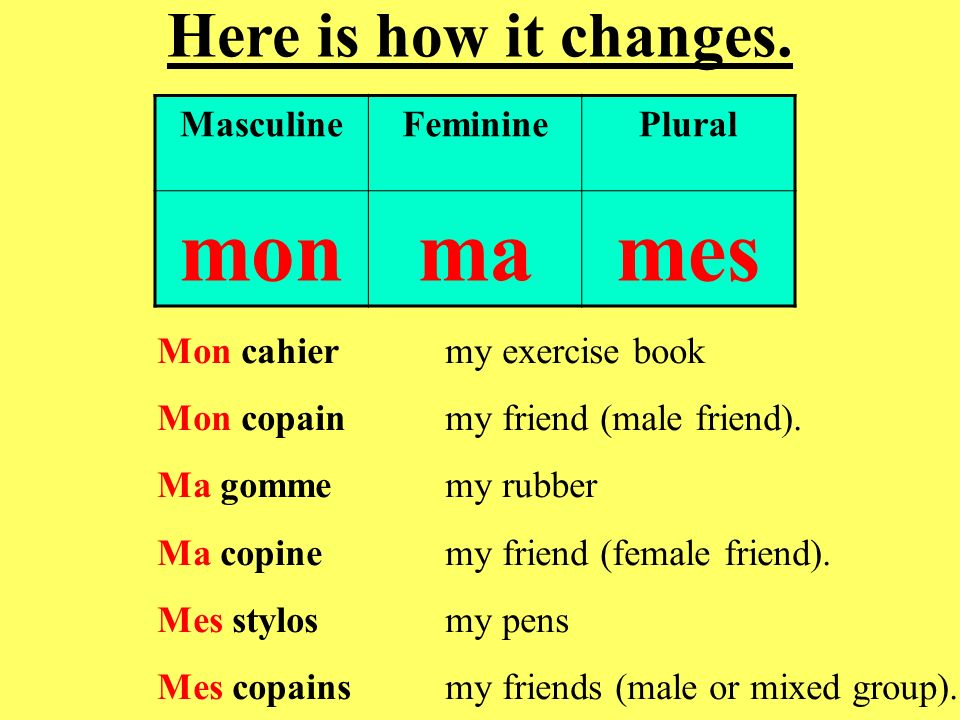mon ma mes Here is how it changes. Masculine Feminine Plural