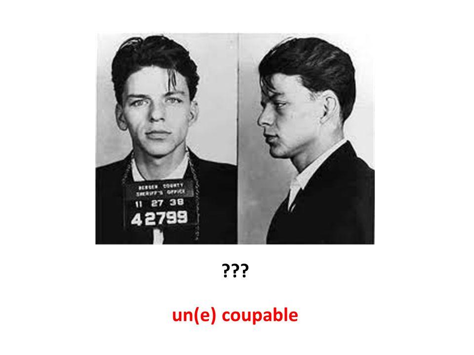 un(e) coupable
