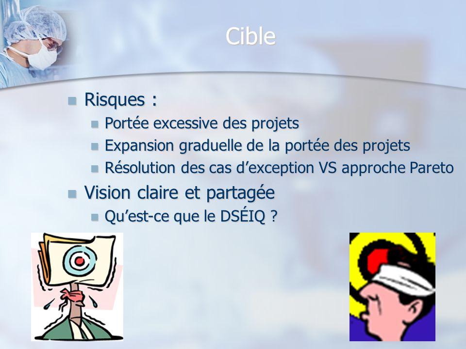 Cible Risques : Vision claire et partagée Portée excessive des projets