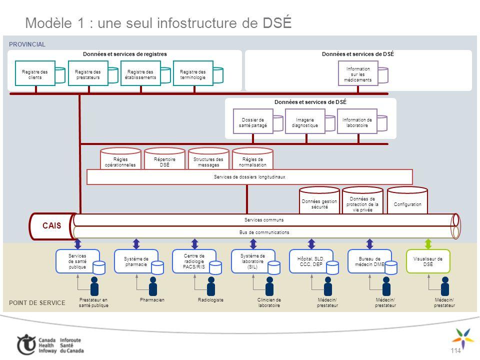Modèle 1 : une seul infostructure de DSÉ