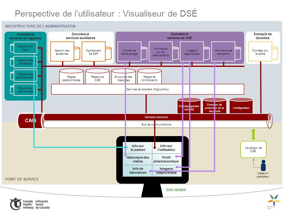 Perspective de l'utilisateur : Visualiseur de DSÉ