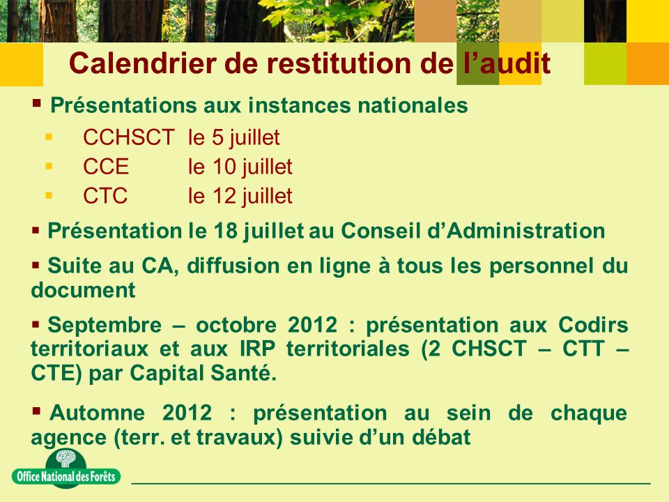 Calendrier de restitution de l'audit