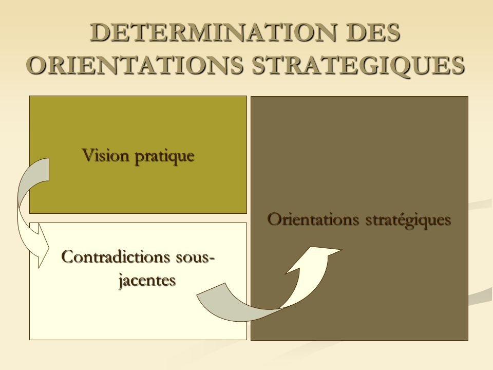 DETERMINATION DES ORIENTATIONS STRATEGIQUES