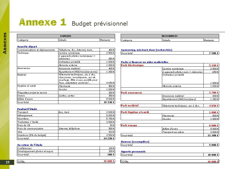 Budget prévisionnel Annexes 25