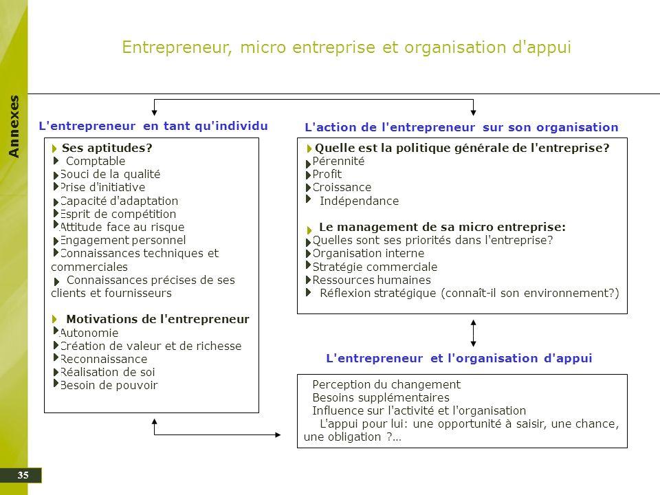 Entrepreneur, micro entreprise et organisation d appui