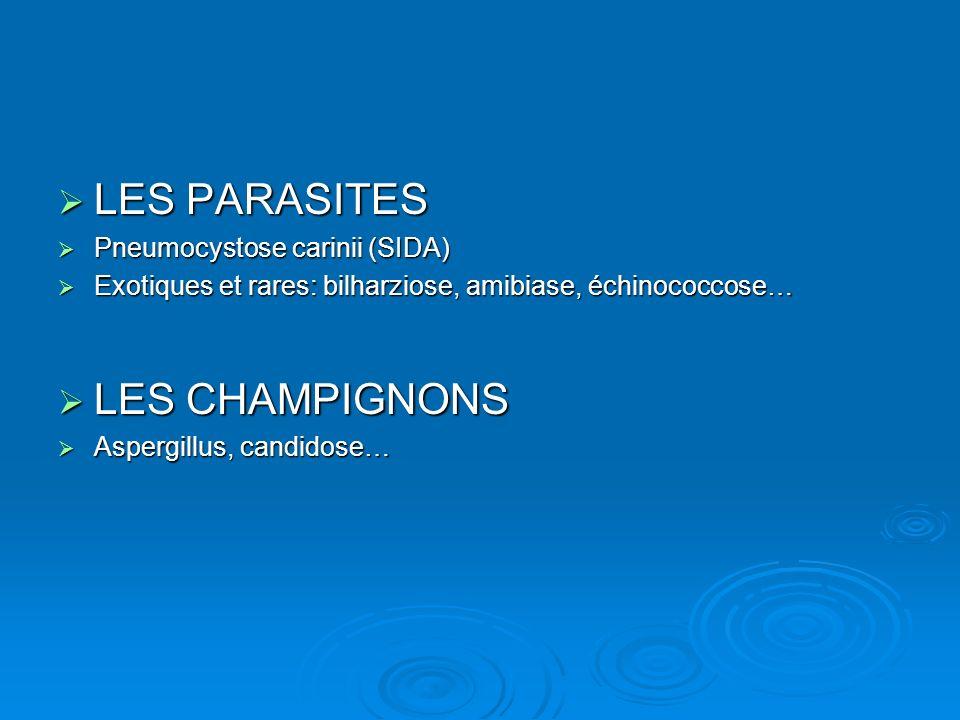 LES PARASITES LES CHAMPIGNONS Pneumocystose carinii (SIDA)