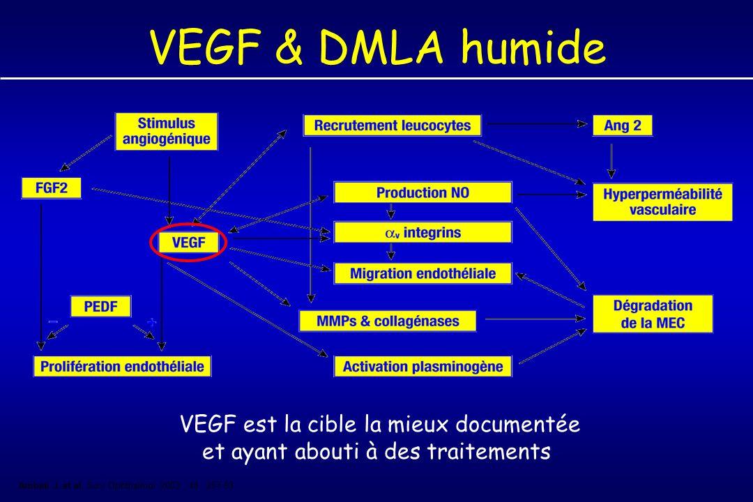 VEGF & DMLA humide VEGF est la cible la mieux documentée et ayant abouti à des traitements.