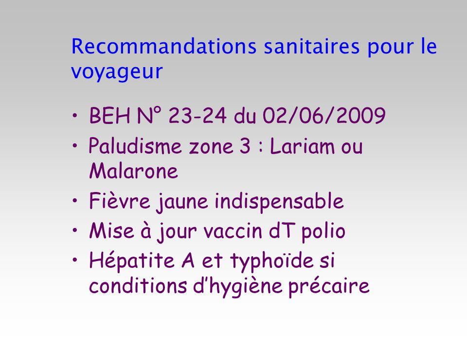 Recommandations sanitaires pour le voyageur