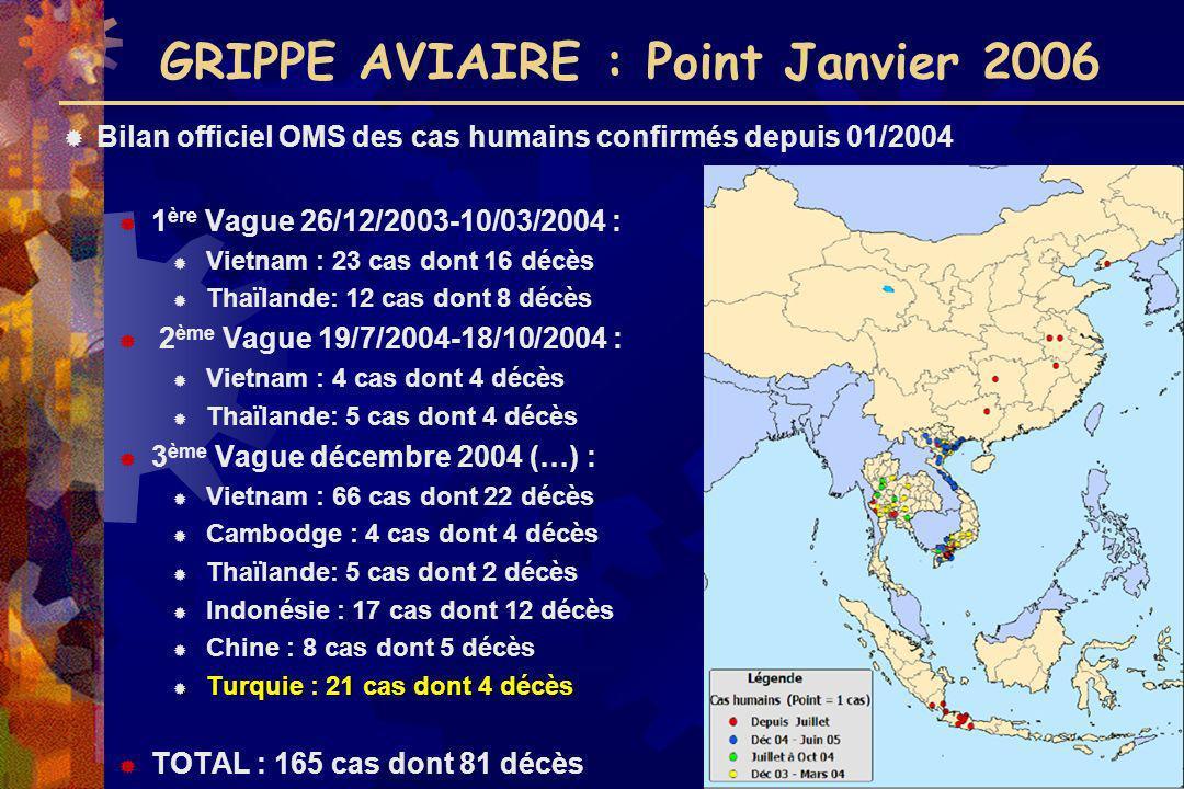 GRIPPE AVIAIRE : Point Janvier 2006
