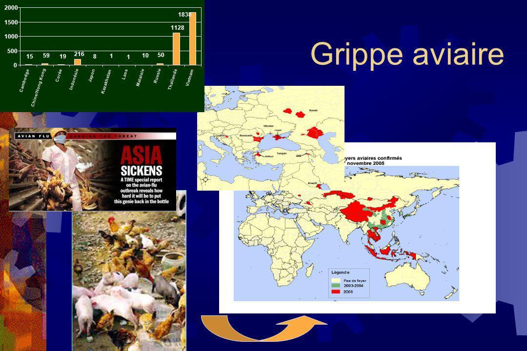 2000 1838. 1500. Grippe aviaire. 1128. 1000. 500. 15. 59. 19. 216. 8. 1. 1. 10. 50. Corée.
