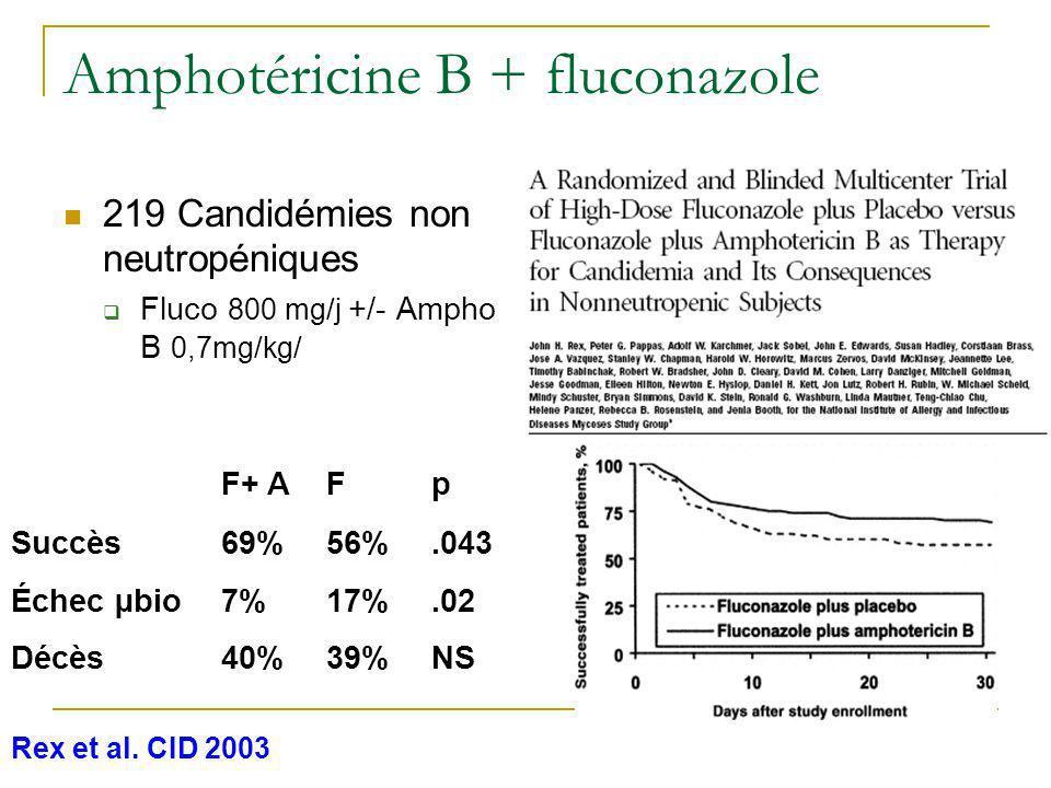 Amphotéricine B + fluconazole
