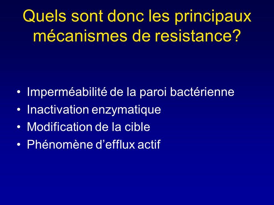 Quels sont donc les principaux mécanismes de resistance