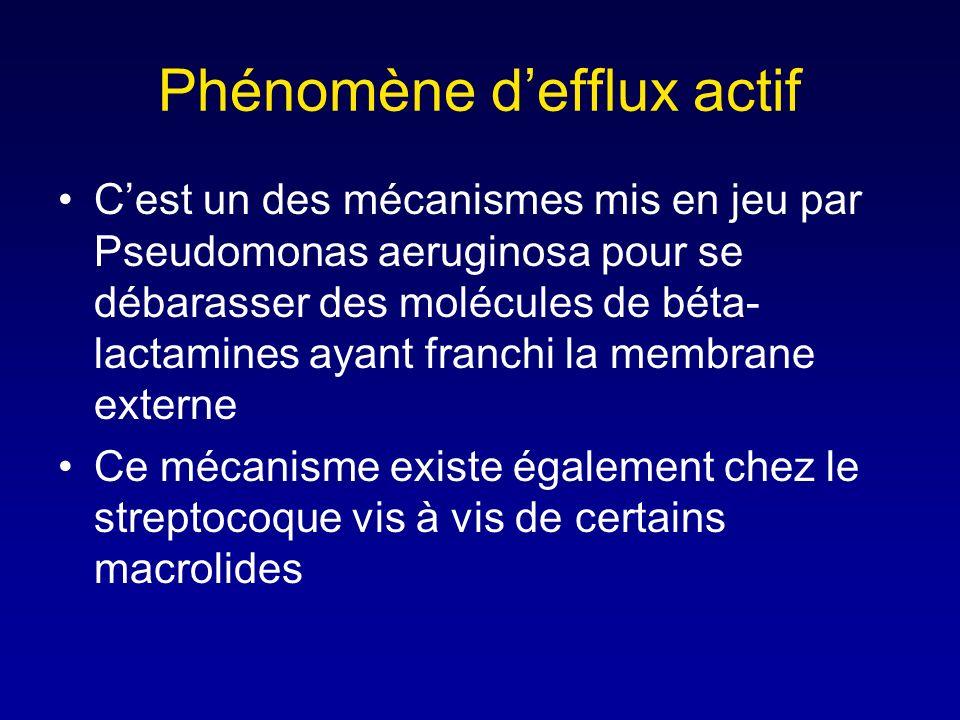 Phénomène d'efflux actif