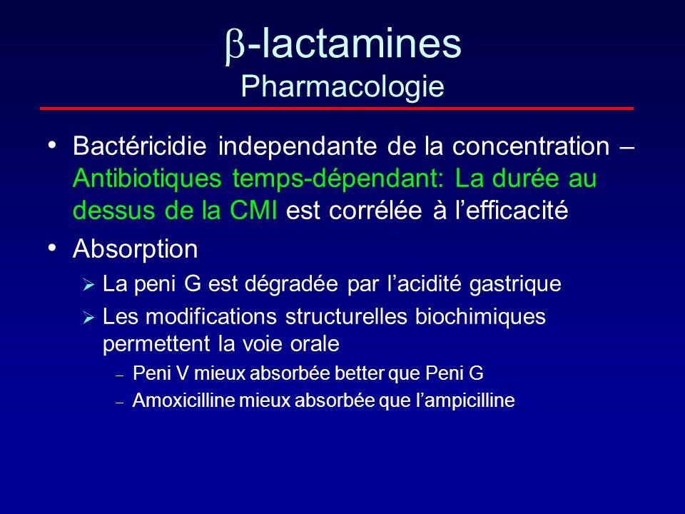 -lactamines Pharmacologie