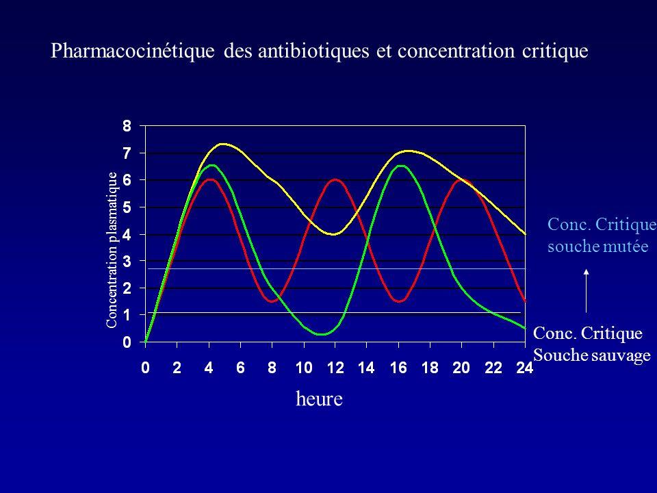 Pharmacocinétique des antibiotiques et concentration critique