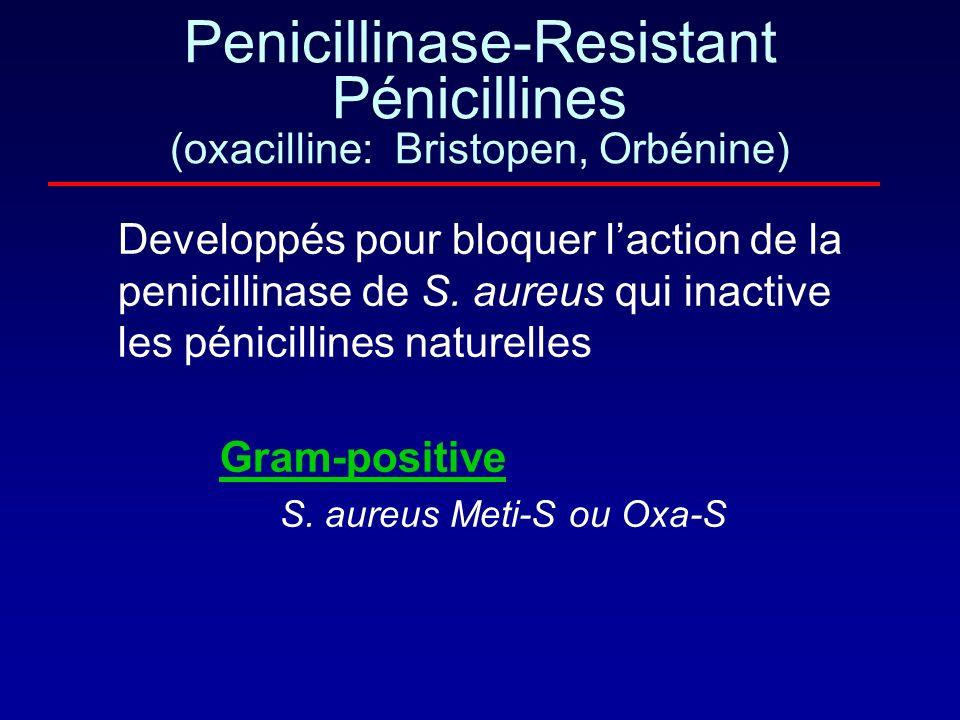 Penicillinase-Resistant Pénicillines (oxacilline: Bristopen, Orbénine)