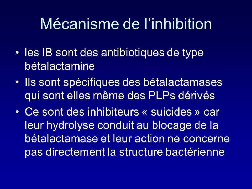 Mécanisme de l'inhibition