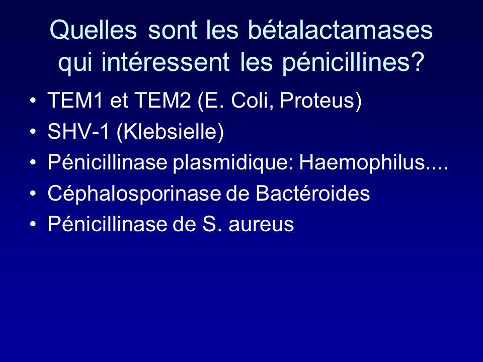 Quelles sont les bétalactamases qui intéressent les pénicillines