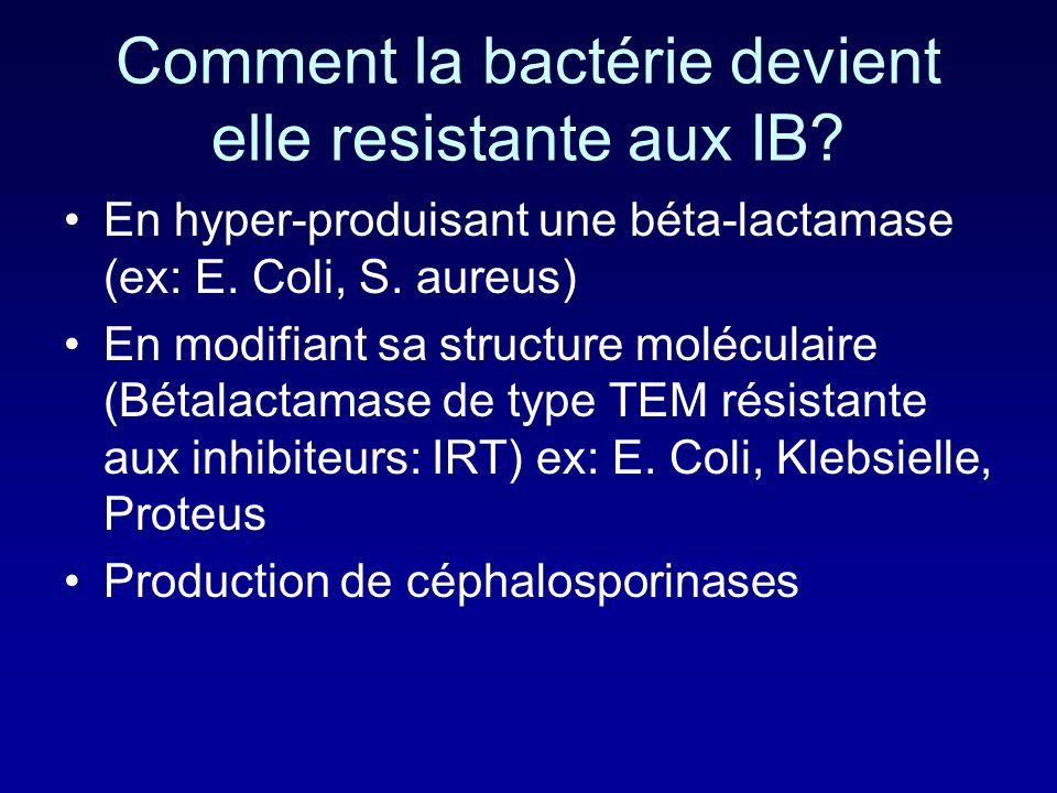 Comment la bactérie devient elle resistante aux IB