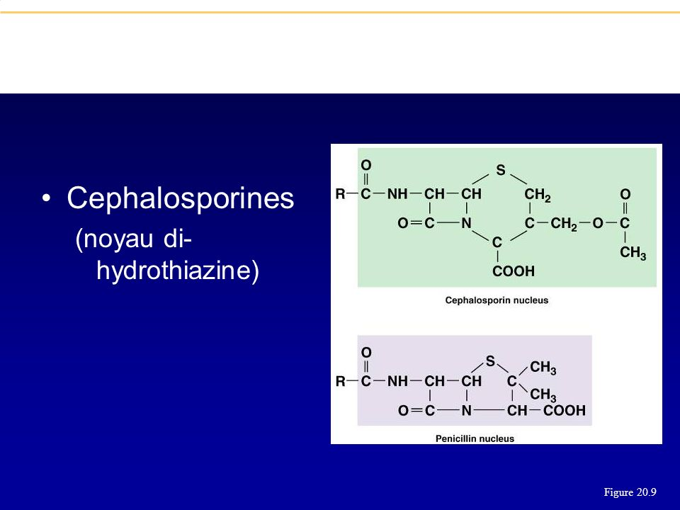Cephalosporines (noyau di-hydrothiazine) Figure 20.9