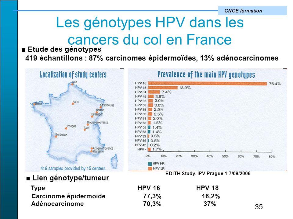 Les génotypes HPV dans les cancers du col en France