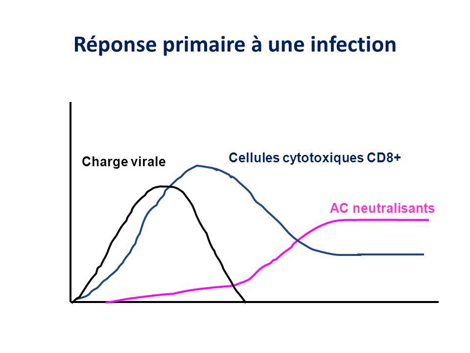 Réponse primaire à une infection