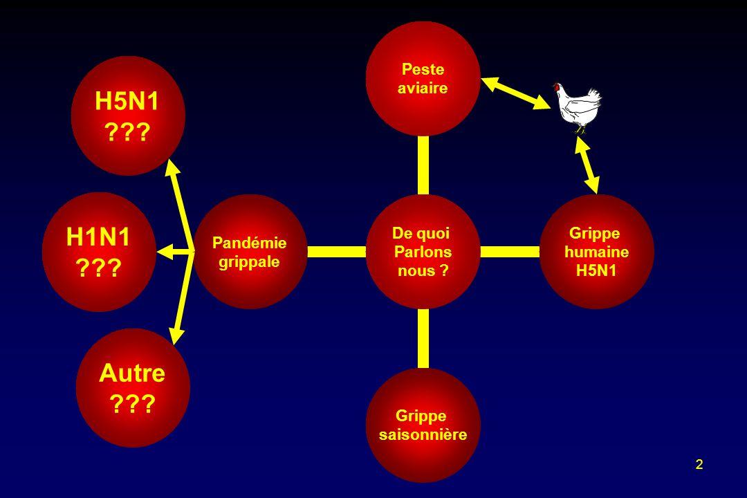 H5N1 H1N1 Autre
