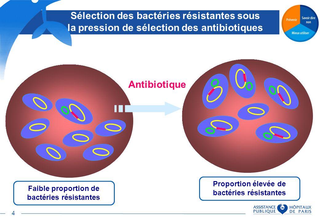 Proportion élevée de bactéries résistantes