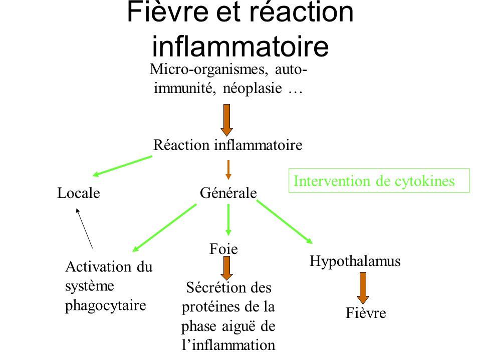Fièvre et réaction inflammatoire