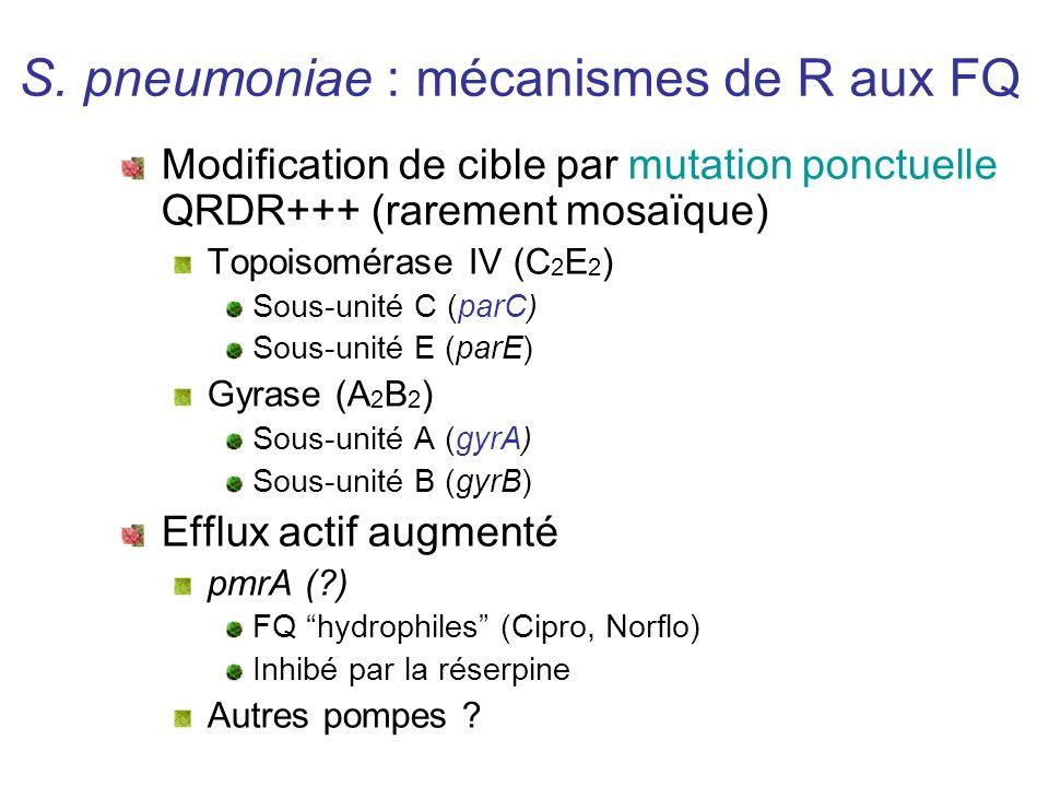 S. pneumoniae : mécanismes de R aux FQ