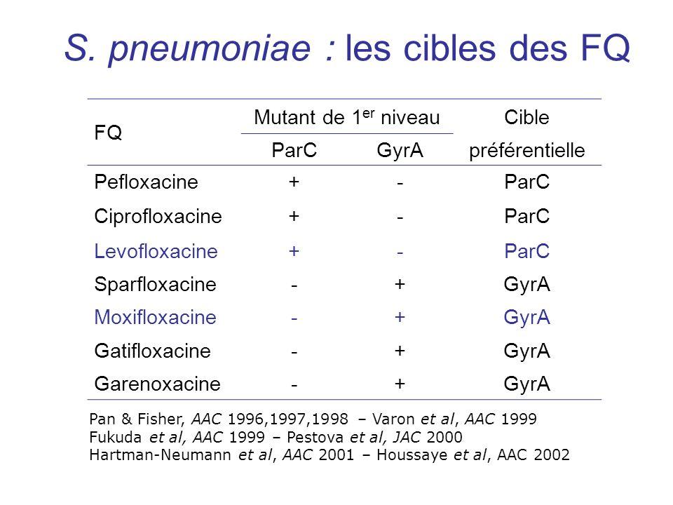 S. pneumoniae : les cibles des FQ