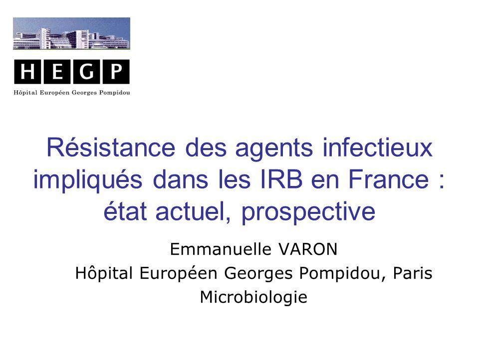 Hôpital Européen Georges Pompidou, Paris