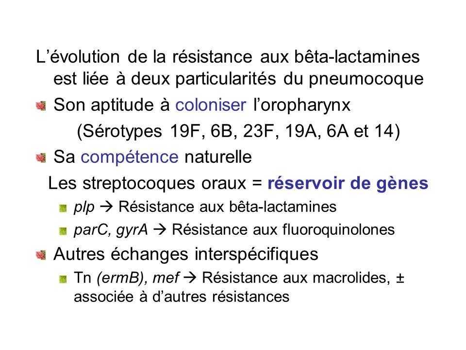 Les streptocoques oraux = réservoir de gènes
