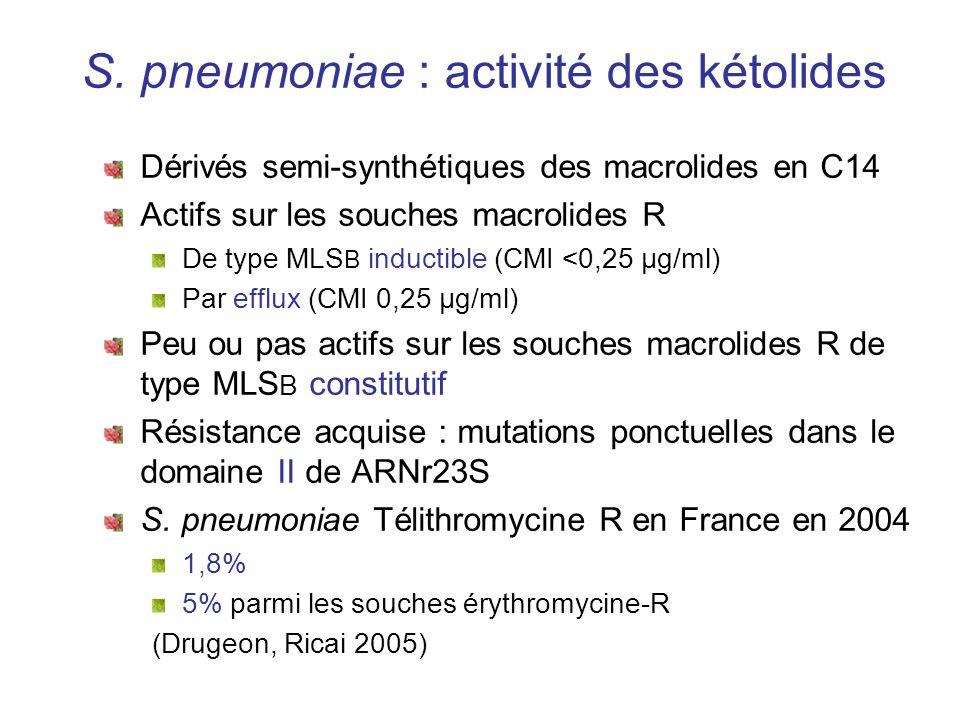 S. pneumoniae : activité des kétolides