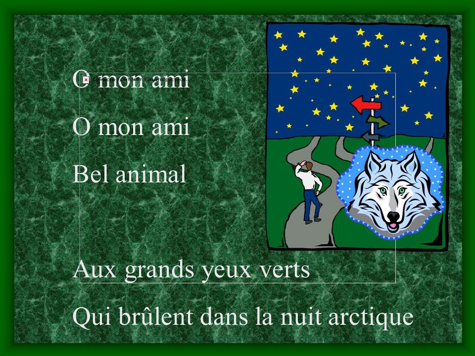 O mon ami Bel animal Aux grands yeux verts Qui brûlent dans la nuit arctique