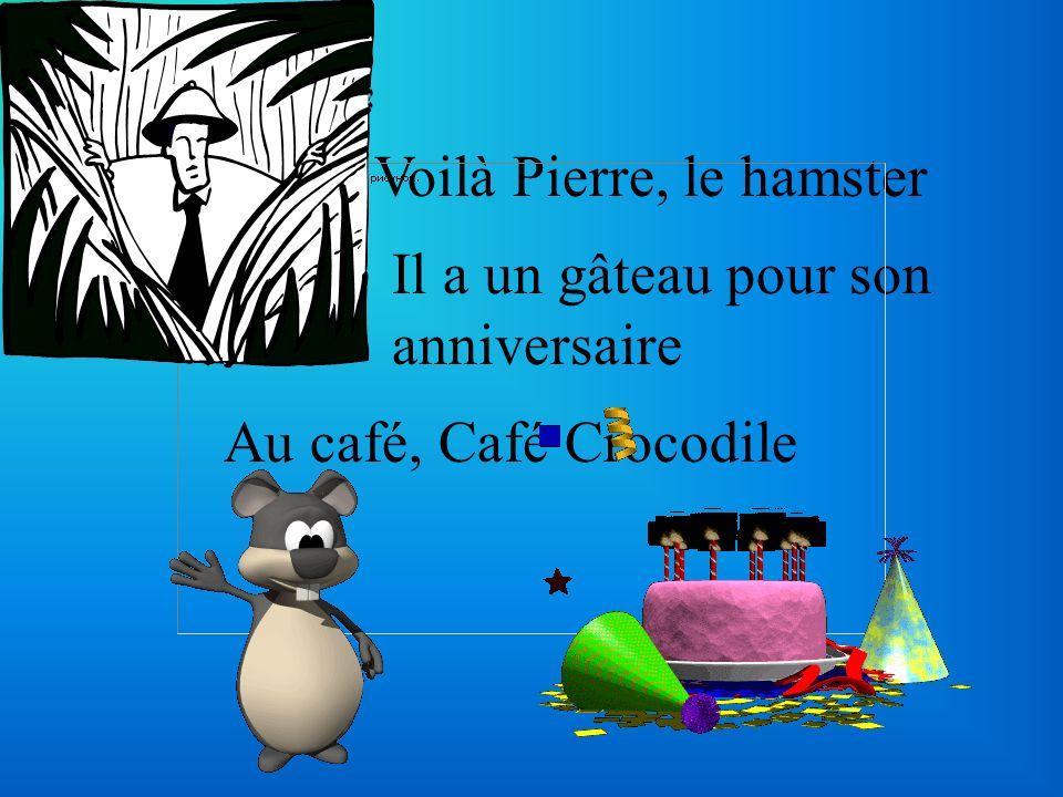 Voilà Pierre, le hamster